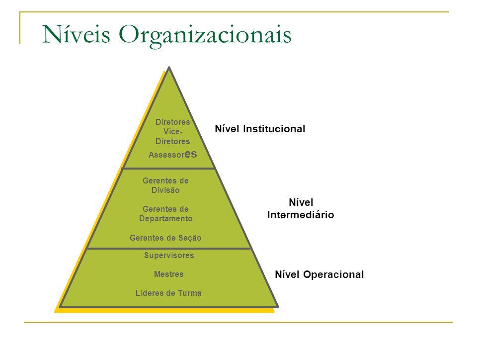 Modelos de Gestão Níveis Organizacionais Prof. : Odair de Souza Cunha Junior18