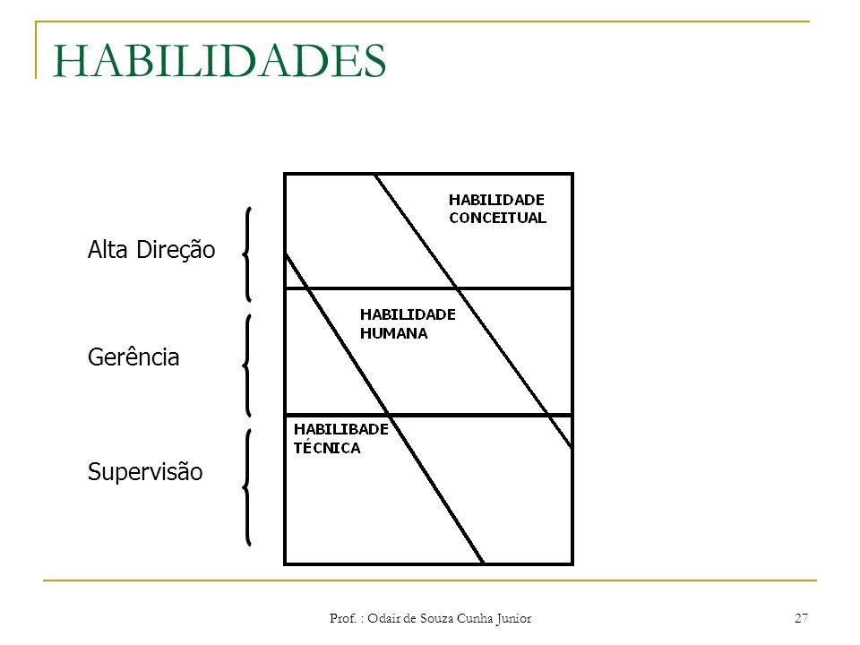 Prof. : Odair de Souza Cunha Junior 26 HABILIDADES Técnica – utiliza o conhecimento em método, técnicas, e equipamentos necessários para execução de t