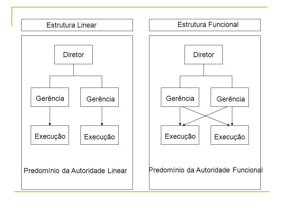02. ESTRUTURA FUNCIONAL Retrata a organização como conjunto de funções que pode, ou não, estar inter- relacionadas através de atividades que componham