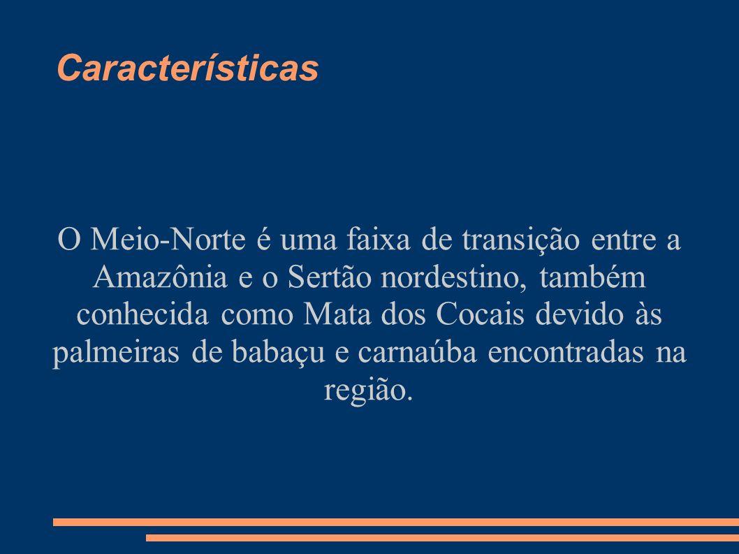 Características O Meio-Norte é uma faixa de transição entre a Amazônia e o Sertão nordestino, também conhecida como Mata dos Cocais devido às palmeira