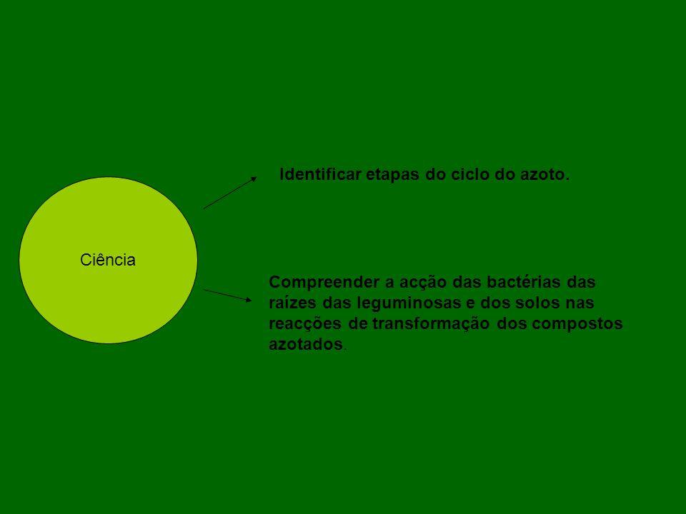 Ciência Identificar etapas do ciclo do azoto. Compreender a acção das bactérias das raízes das leguminosas e dos solos nas reacções de transformação d