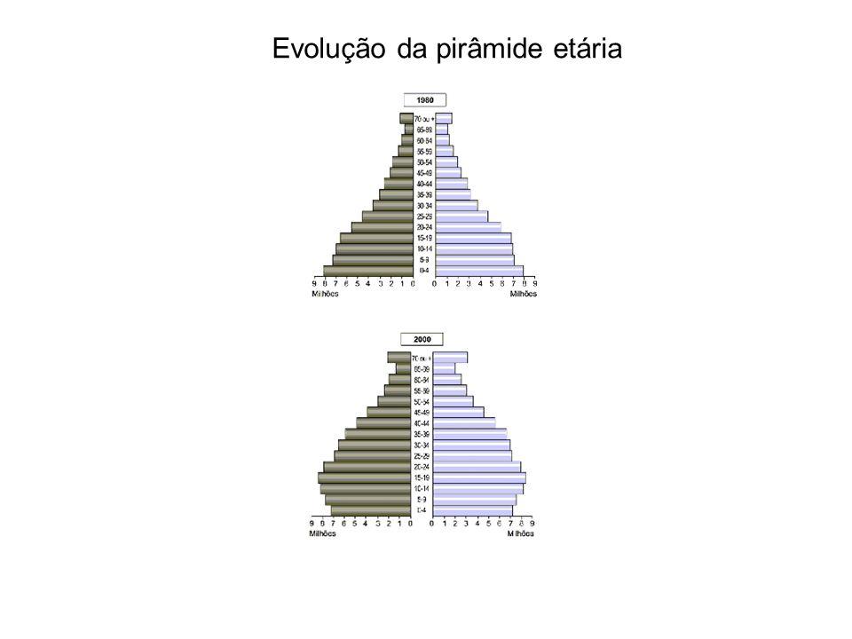 Evolução da pirâmide etária