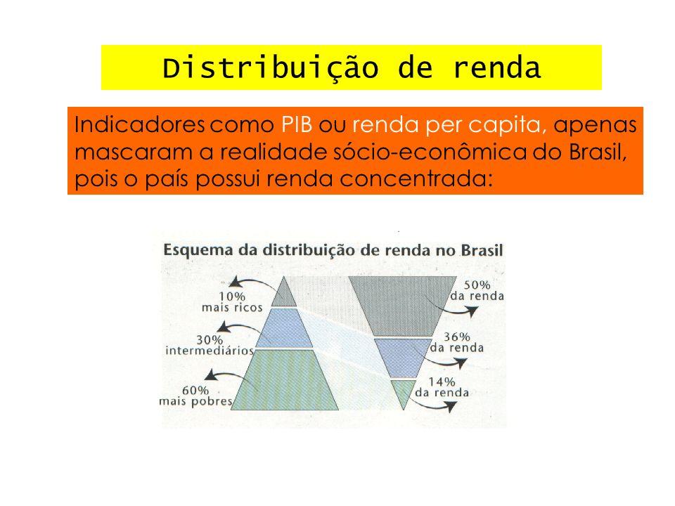 Distribuição de renda Indicadores como PIB ou renda per capita, apenas mascaram a realidade sócio-econômica do Brasil, pois o país possui renda concen