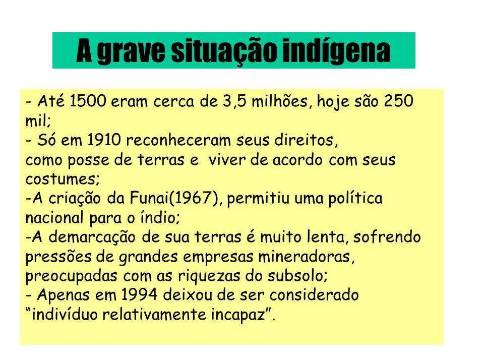 A grave situação indígena - Até 1500 eram cerca de 3,5 milhões, hoje são 250 mil; - Só em 1910 reconheceram seus direitos, como posse de terras e vive