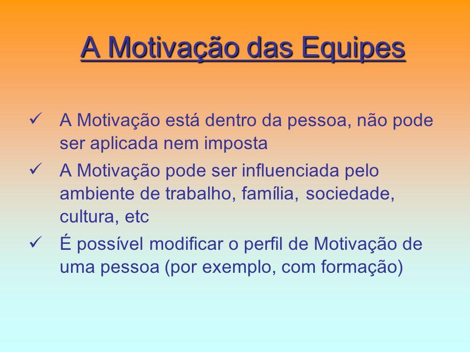 A Motivação está dentro da pessoa, não pode ser aplicada nem imposta A Motivação pode ser influenciada pelo ambiente de trabalho, família, sociedade,