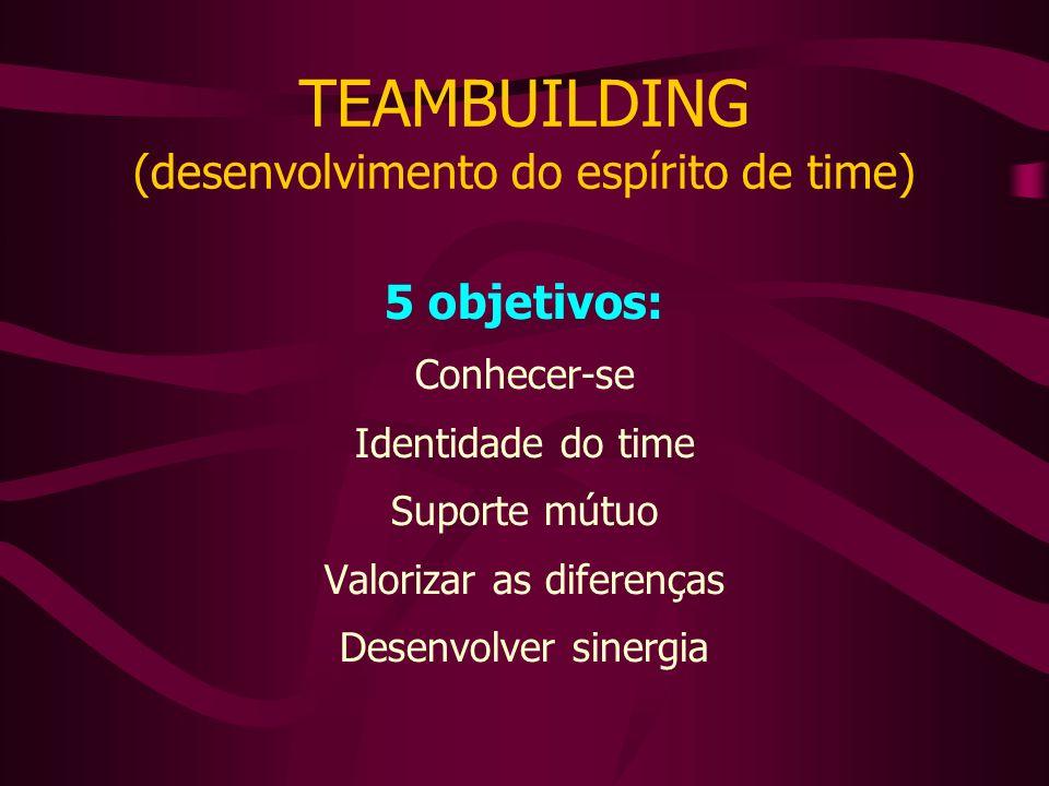 TEAMBUILDING (desenvolvimento do espírito de time) 5 objetivos: Conhecer-se Identidade do time Suporte mútuo Valorizar as diferenças Desenvolver sinergia