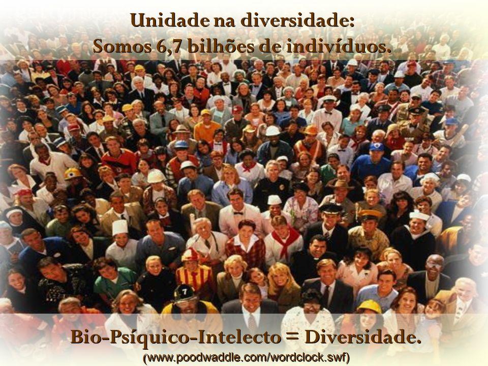 Bio-Psíquico-Intelecto = Diversidade. ( www.poodwaddle.com/wordclock.swf) Bio-Psíquico-Intelecto = Diversidade. ( www.poodwaddle.com/wordclock.swf) Un