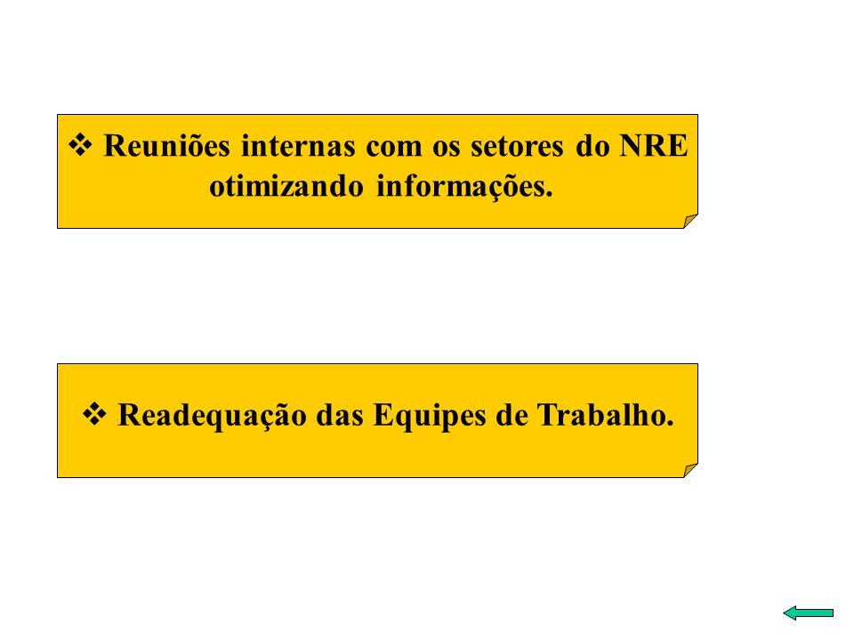 Readequação das Equipes de Trabalho. Reuniões internas com os setores do NRE otimizando informações.