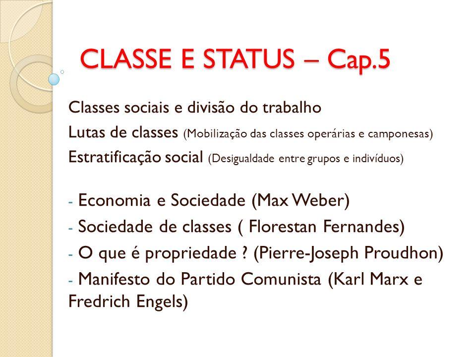 CLASSE E STATUS – Cap.5 Classes sociais e divisão do trabalho Lutas de classes (Mobilização das classes operárias e camponesas) Estratificação social
