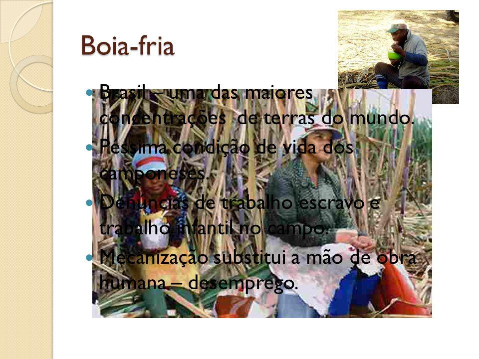Boia-fria Brasil – uma das maiores concentrações de terras do mundo. Péssima condição de vida dos camponeses. Denúncias de trabalho escravo e trabalho