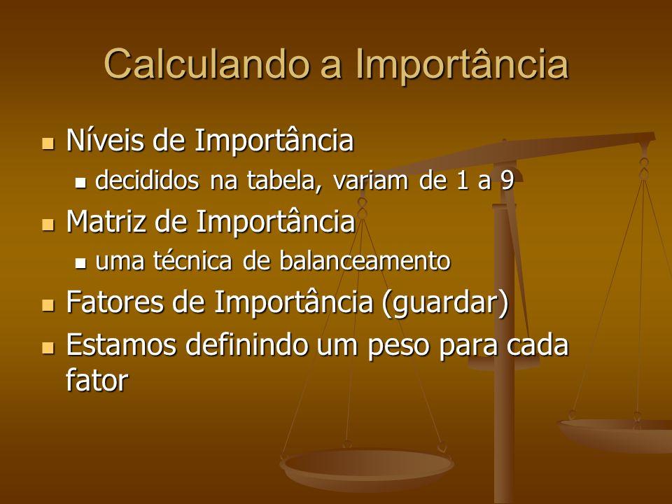 Calculando a Importância Níveis de Importância Níveis de Importância decididos na tabela, variam de 1 a 9 decididos na tabela, variam de 1 a 9 Matriz