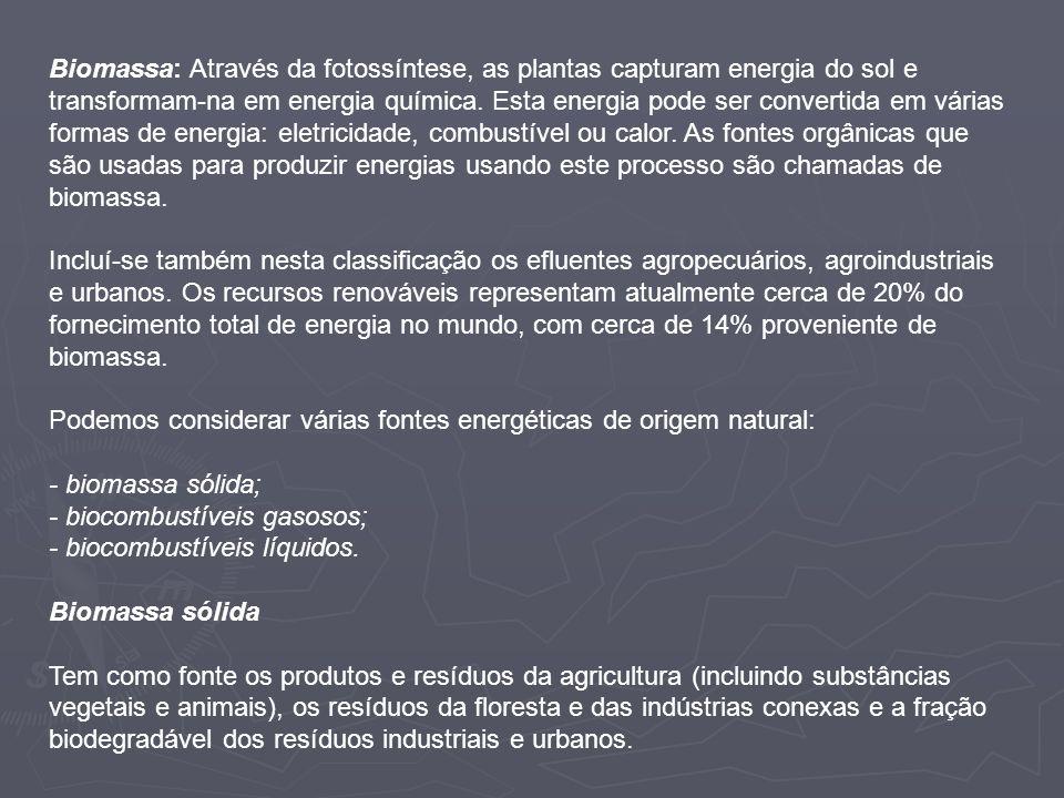 Biomassa: Através da fotossíntese, as plantas capturam energia do sol e transformam-na em energia química. Esta energia pode ser convertida em várias