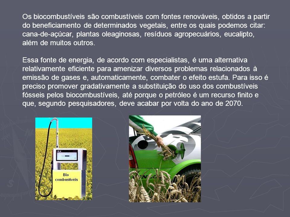 Os biocombustíveis são combustíveis com fontes renováveis, obtidos a partir do beneficiamento de determinados vegetais, entre os quais podemos citar:
