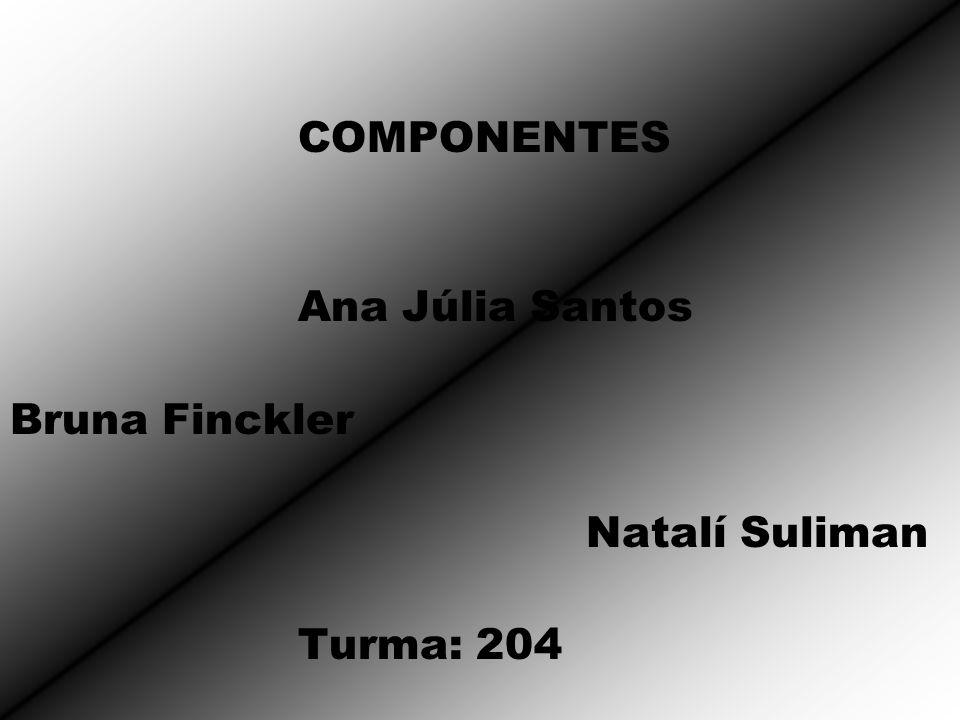 COMPONENTES Ana Júlia Santos Bruna Finckler Natalí Suliman Turma: 204