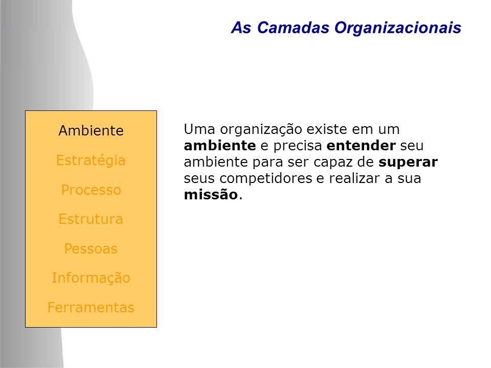 As Camadas Organizacionais Uma organização existe em um ambiente e precisa entender seu ambiente para ser capaz de superar seus competidores e realiza
