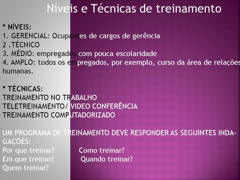 Níveis e Técnicas de treinamento * NÍVEIS: 1. GERENCIAL: Ocupantes de cargos de gerência 2.TÉCNICO 3. MÉDIO: empregados com pouca escolaridade 4. AMPL