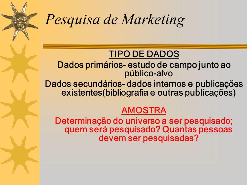 Pesquisa de Marketing TIPO DE DADOS Dados primários- estudo de campo junto ao público-alvo Dados secundários- dados internos e publicações existentes(