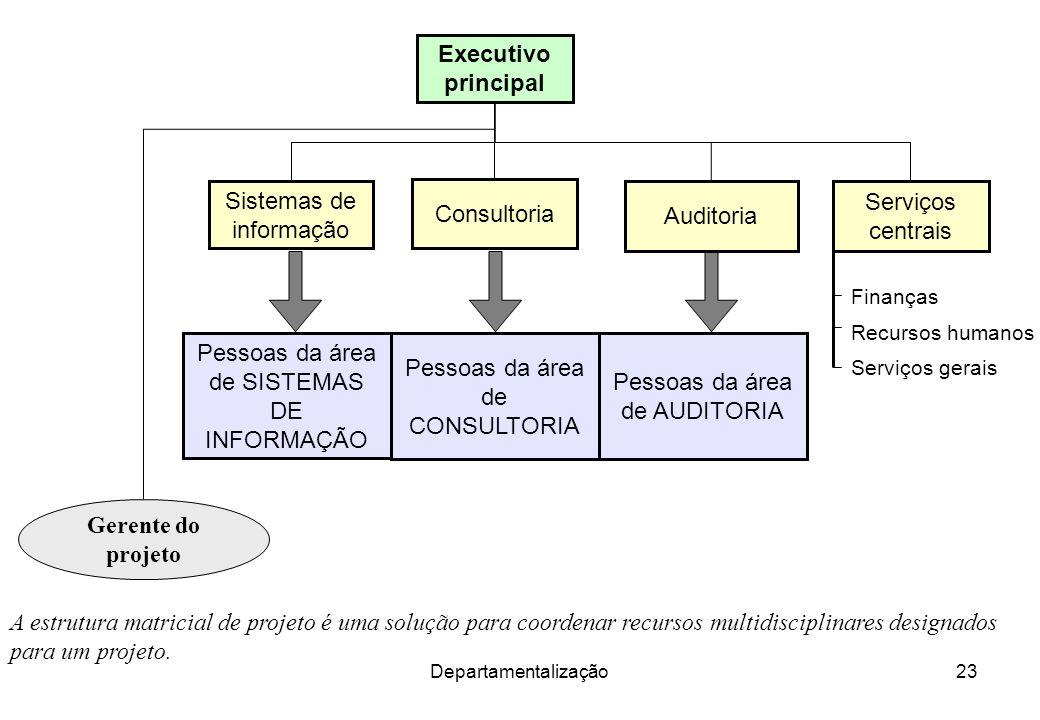 Departamentalização23 A estrutura matricial de projeto é uma solução para coordenar recursos multidisciplinares designados para um projeto. Executivo