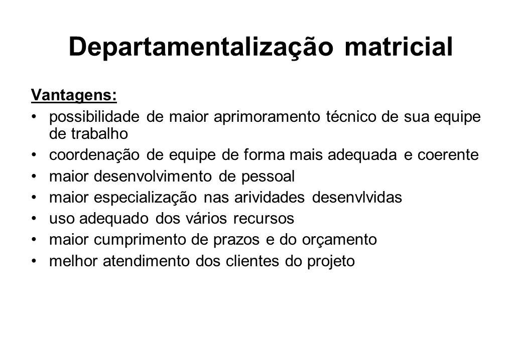 Departamentalização matricial Vantagens: possibilidade de maior aprimoramento técnico de sua equipe de trabalho coordenação de equipe de forma mais ad