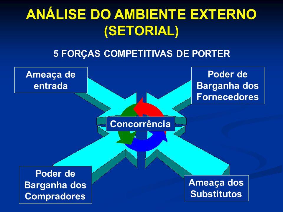 Ameaça de entrada Concorrência Poder de Barganha dos Compradores Poder de Barganha dos Fornecedores Ameaça dos Substitutos ANÁLISE DO AMBIENTE EXTERNO