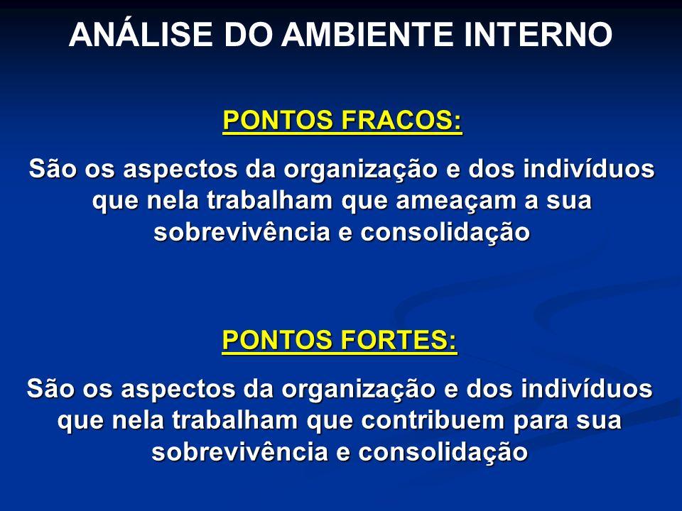 PONTOS FORTES: São os aspectos da organização e dos indivíduos que nela trabalham que contribuem para sua sobrevivência e consolidação ANÁLISE DO AMBI
