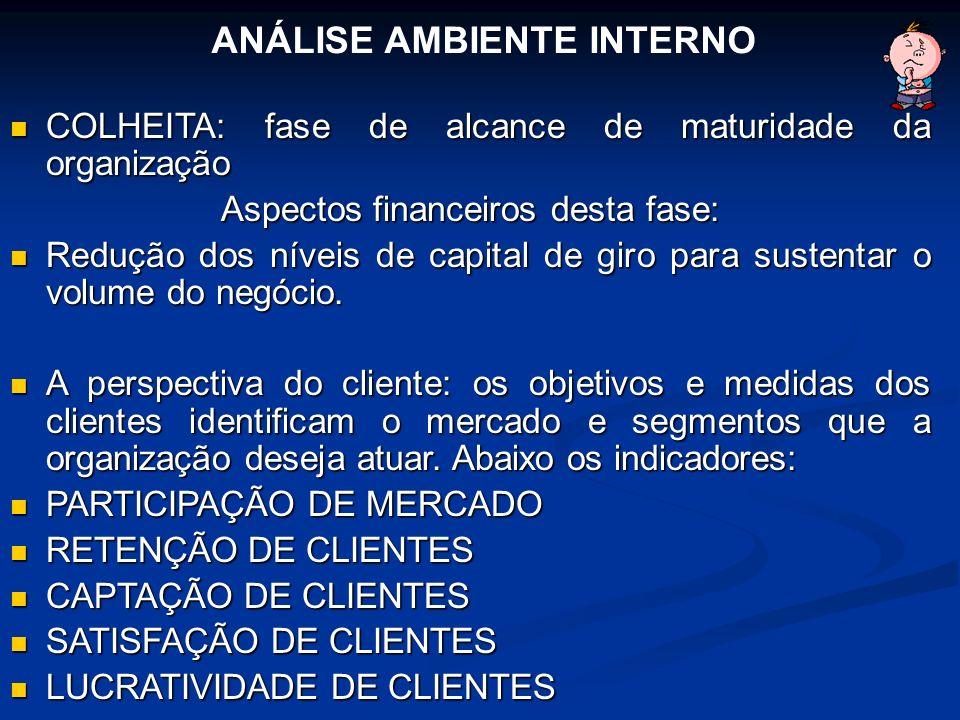 COLHEITA: fase de alcance de maturidade da organização COLHEITA: fase de alcance de maturidade da organização Aspectos financeiros desta fase: Redução