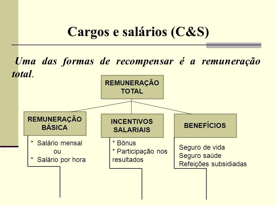 Cargos e salários (C&S) 1.1 Contextualização.Diferentes pessoas: com suas habilidades e talentos buscam diferentes objetivos motivacionais no trabalho;.A organização deve perceber o salário como função agregada de motivação.