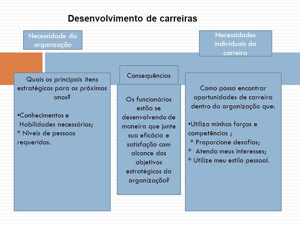 Necessidade da organização Necessidades individuais da carreira Quais os principais itens estratégicos para os próximos anos.