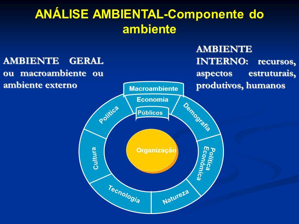 ANÁLISE AMBIENTAL-Componente do ambiente Organização Política Economia Demografia Tecnologia Natureza Cultura Política Econômica Públicos Macroambient