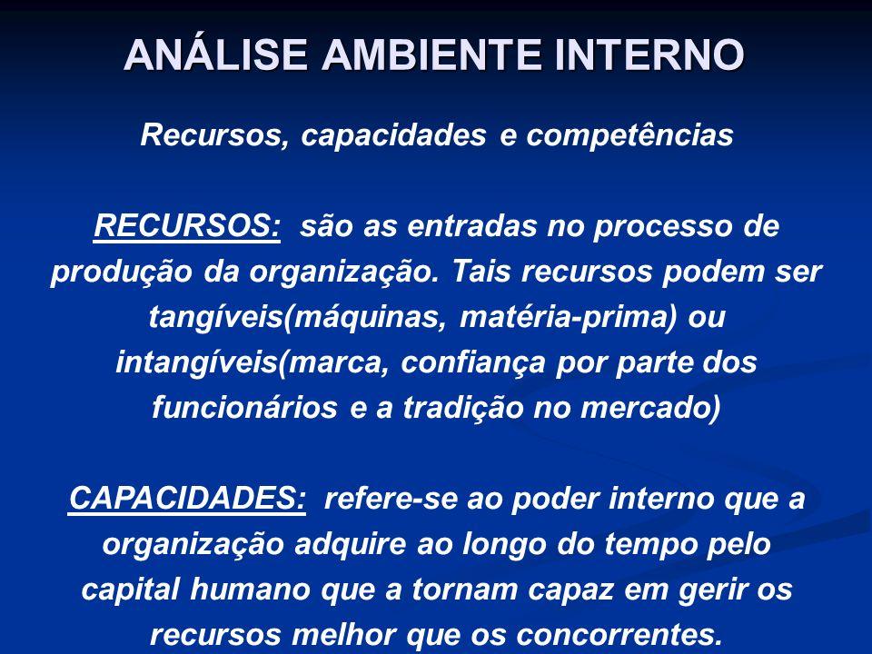 Os atributos internos de uma organização podem ser chamados de recursos e capacidades.