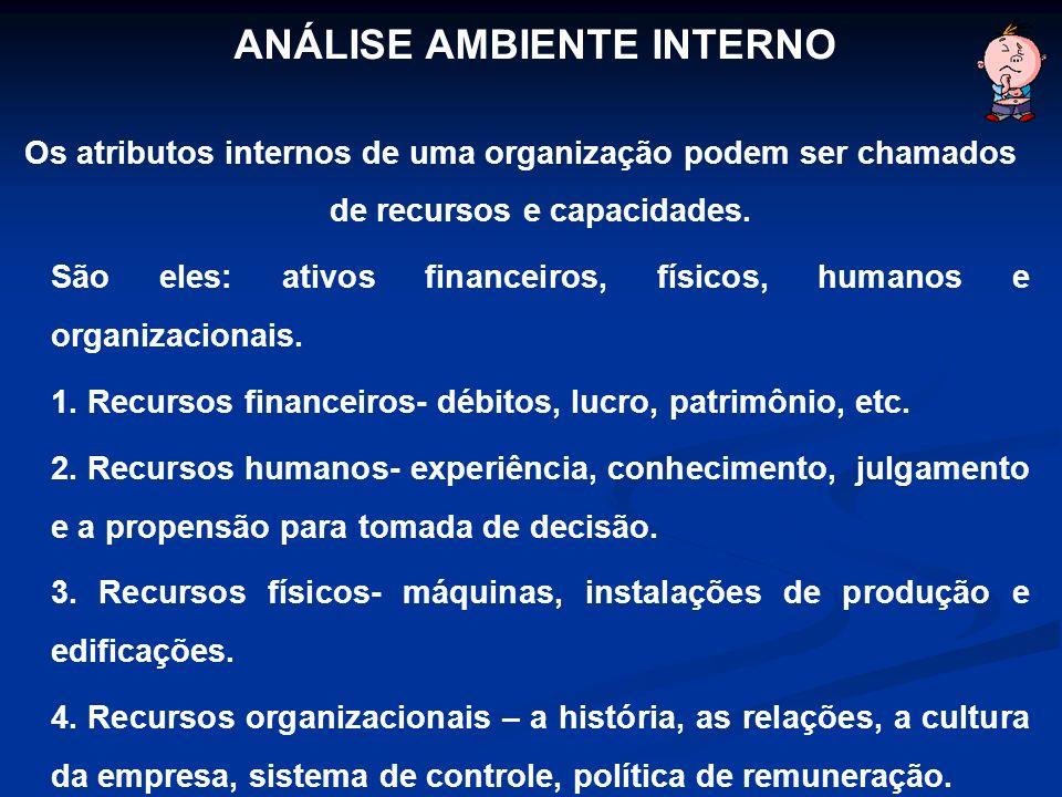 Os atributos internos de uma organização podem ser chamados de recursos e capacidades. São eles: ativos financeiros, físicos, humanos e organizacionai