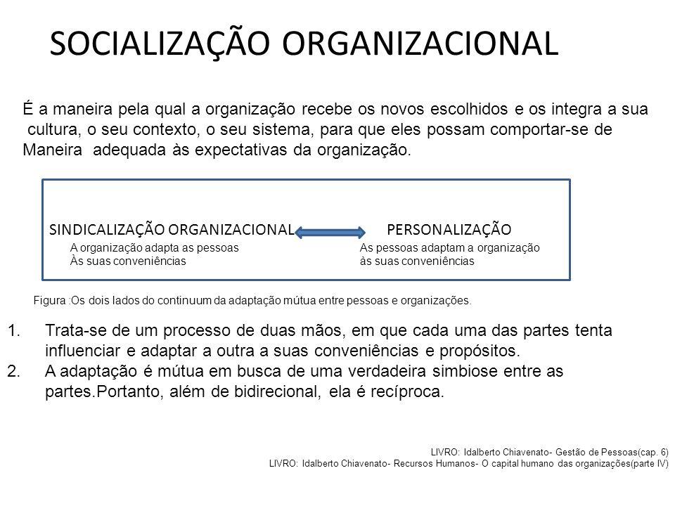 SOCIALIZAÇÃO ORGANIZACIONAL 1.Modo de vida da organização- como ideias, crenças,costumes, regras, técnicas, etc, compartilhados por todos os membros;
