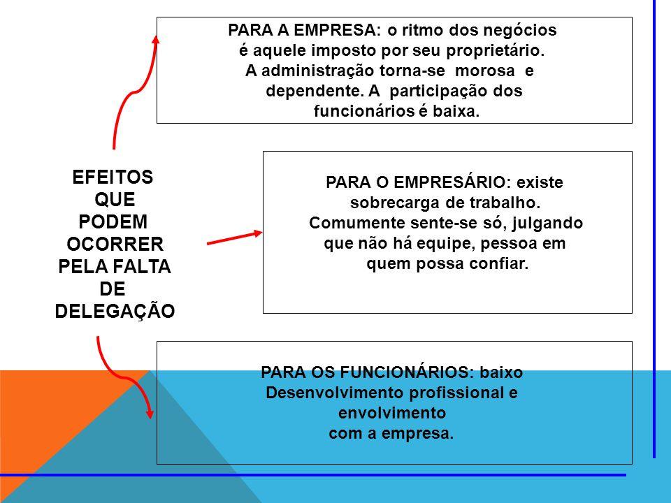 EFEITOS QUE PODEM OCORRER PELA FALTA DE DELEGAÇÃO PARA A EMPRESA: o ritmo dos negócios é aquele imposto por seu proprietário. A administração torna-se
