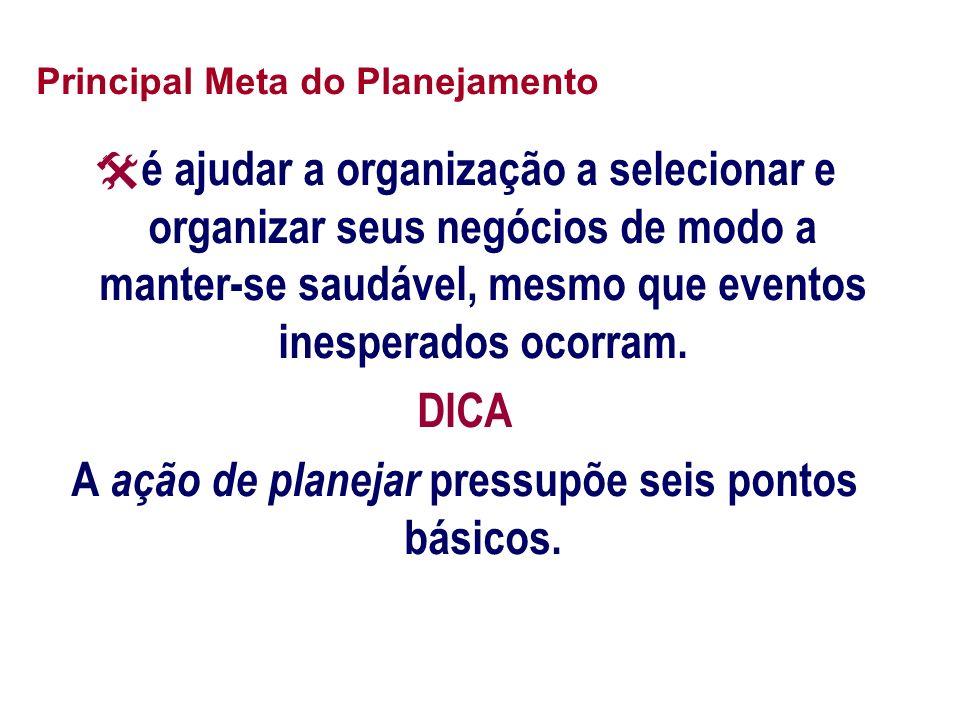 Principal Meta do Planejamento é ajudar a organização a selecionar e organizar seus negócios de modo a manter-se saudável, mesmo que eventos inesperad