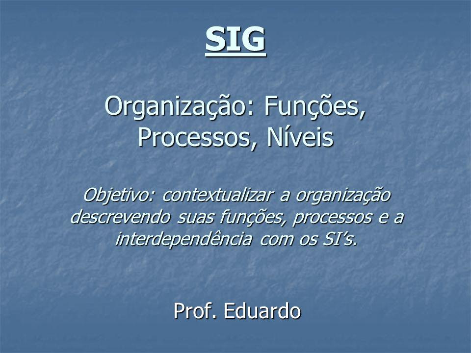 SIG Organização: Funções, Processos, Níveis Objetivo: contextualizar a organização descrevendo suas funções, processos e a interdependência com os SIs
