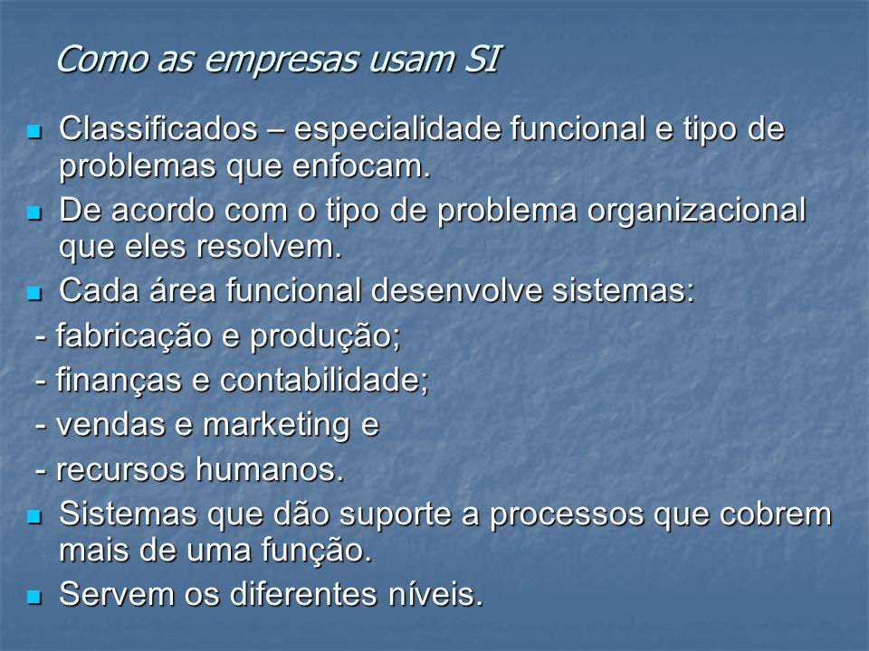 Como as empresas usam SI Classificados – especialidade funcional e tipo de problemas que enfocam. Classificados – especialidade funcional e tipo de pr