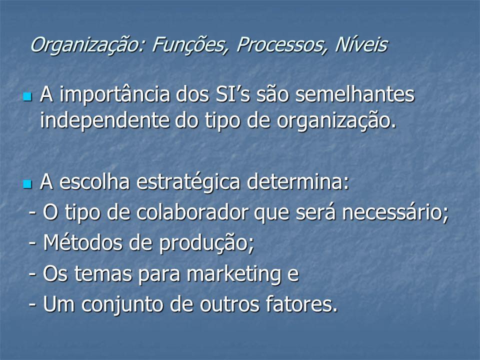 Organização: Funções, Processos, Níveis A importância dos SIs são semelhantes independente do tipo de organização. A importância dos SIs são semelhant