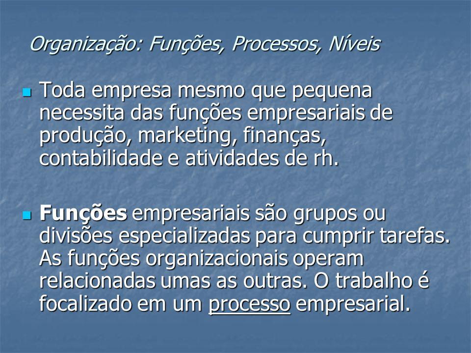 Organização: Funções, Processos, Níveis Toda empresa mesmo que pequena necessita das funções empresariais de produção, marketing, finanças, contabilid