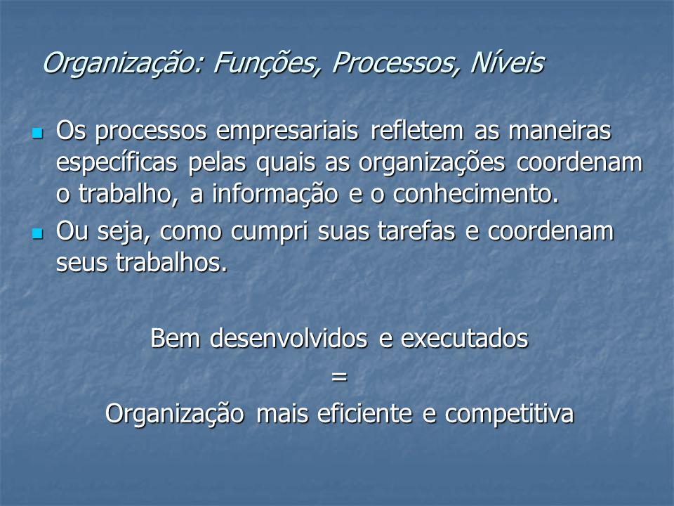 Organização: Funções, Processos, Níveis Os processos empresariais refletem as maneiras específicas pelas quais as organizações coordenam o trabalho, a