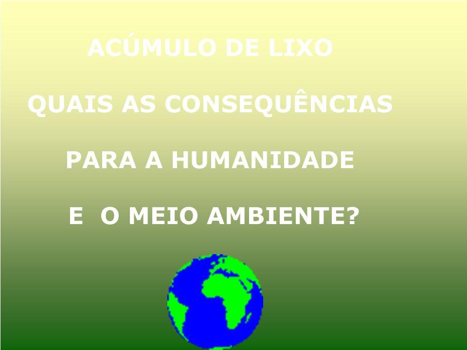 ACÚMULO DE LIXO QUAIS AS CONSEQUÊNCIAS PARA A HUMANIDADE E O MEIO AMBIENTE?