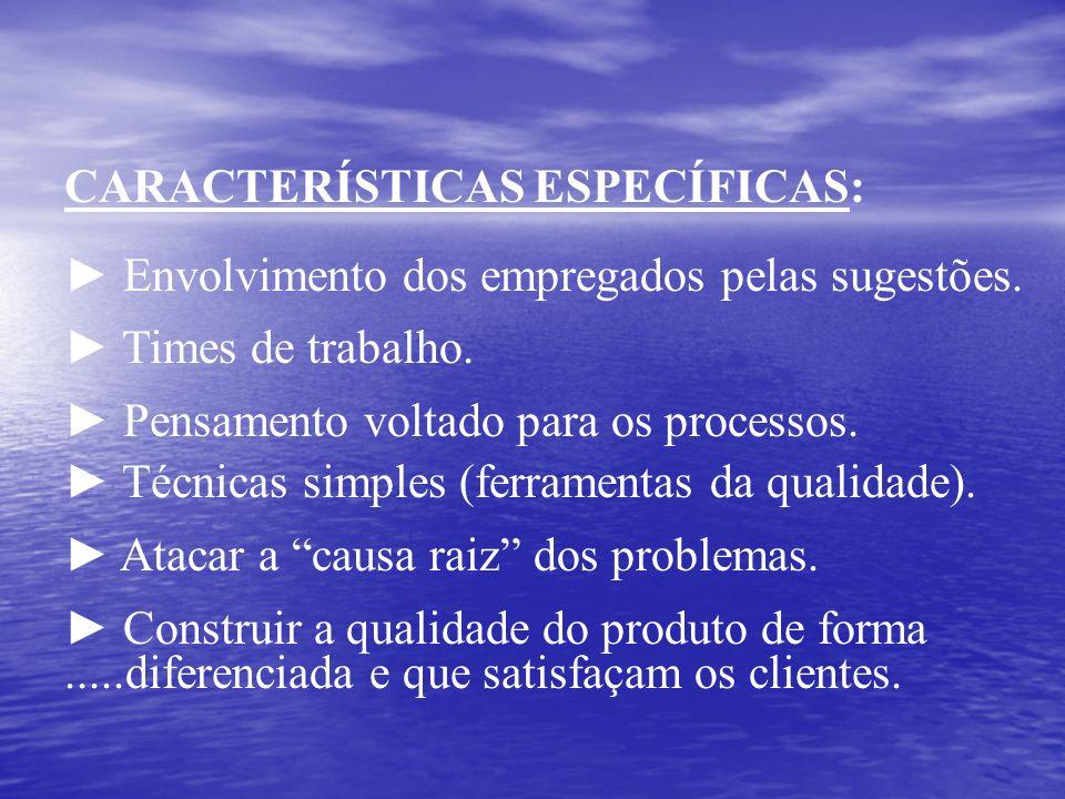 CARACTERÍSTICAS ESPECÍFICAS: Envolvimento dos empregados pelas sugestões. Times de trabalho. Pensamento voltado para os processos. Técnicas simples (f