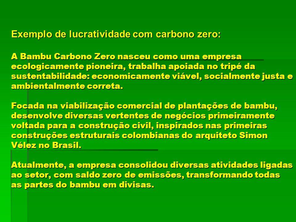 Exemplo de lucratividade com carbono zero: A Bambu Carbono Zero nasceu como uma empresa ecologicamente pioneira, trabalha apoiada no tripé da sustenta