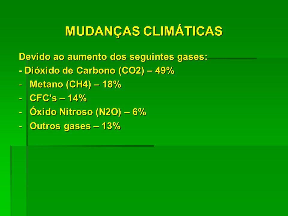 MUDANÇAS CLIMÁTICAS Devido ao aumento dos seguintes gases: - Dióxido de Carbono (CO2) – 49% -Metano (CH4) – 18% -CFCs – 14% -Óxido Nitroso (N2O) – 6%