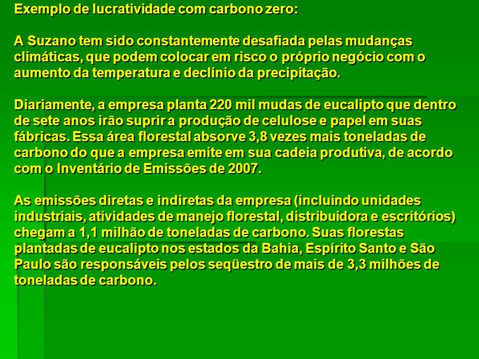 Exemplo de lucratividade com carbono zero: A Suzano tem sido constantemente desafiada pelas mudanças climáticas, que podem colocar em risco o próprio