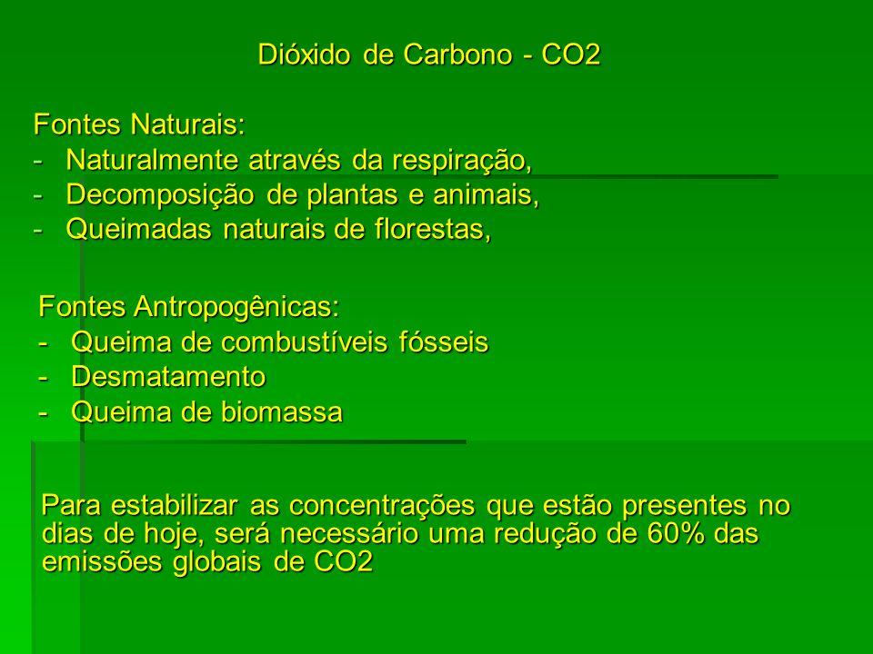 Metano – NH4 Fontes Naturais: -Decomposição de plantas e animais Oxido Nitroso – N2O Fontes Naturais: -Decomposição do nitrogênio Fontes Antropogênicas: -Criação de gado -Produção de petróleo Fontes Antropogênicas: -Indústrias de fertilizantes -Combustão de petróleo