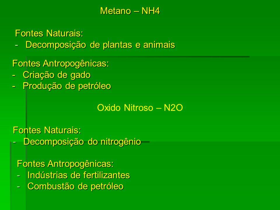 Metano – NH4 Fontes Naturais: -Decomposição de plantas e animais Oxido Nitroso – N2O Fontes Naturais: -Decomposição do nitrogênio Fontes Antropogênica