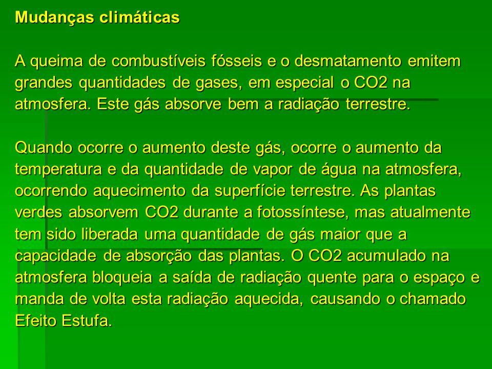 Mudanças climáticas A queima de combustíveis fósseis e o desmatamento emitem grandes quantidades de gases, em especial o CO2 na atmosfera. Este gás ab