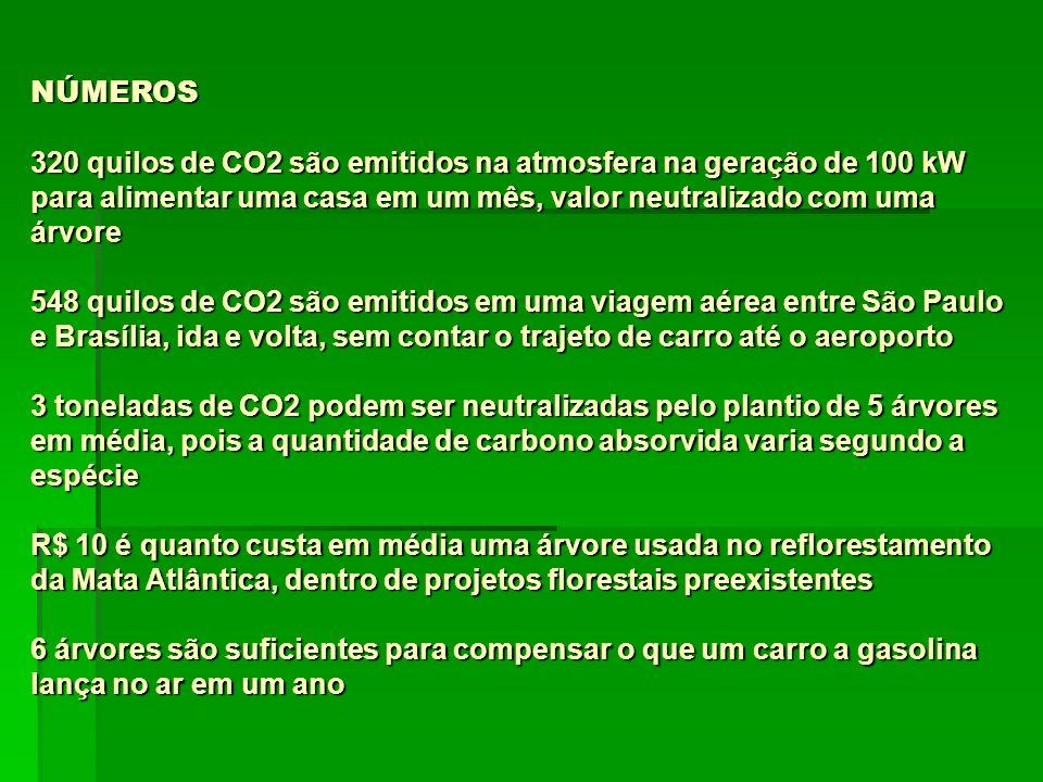NÚMEROS 320 quilos de CO2 são emitidos na atmosfera na geração de 100 kW para alimentar uma casa em um mês, valor neutralizado com uma árvore 548 quil