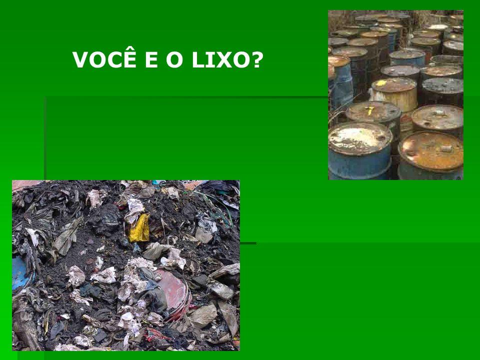 Devemos exigir que as autoridades assumam o compromisso de acabar com os lixões, comuns hoje na maioria dos municípios e que tantos problemas trazem não só ao meio ambiente, como também às sociedades.