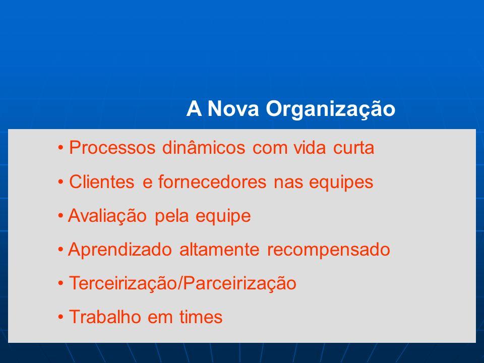 A Nova Organização Baseada no conhecimento Organização horizontal Confiança nas equipes Desenvolvimento de talentos